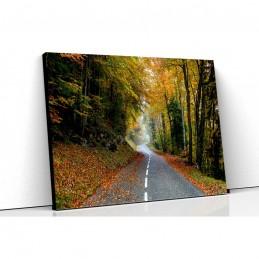 Tablou canvas drum asfaltat...