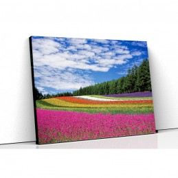 Tablou canvas camp cu flori...