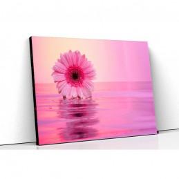 Tablou canvas floare de...