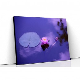 Tablou canvas lotus