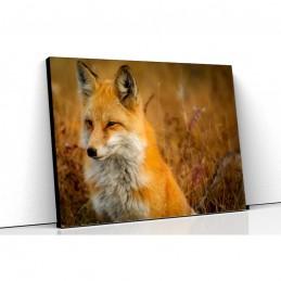Tablou canvas vulpea